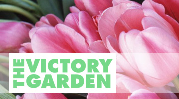 victorygarden-video